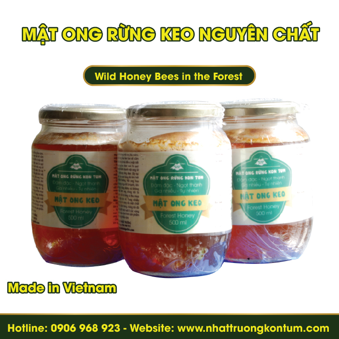 Mật Ong Rừng Keo Nguyên Chất - Wild Honey Bees in the Forest - 500ml