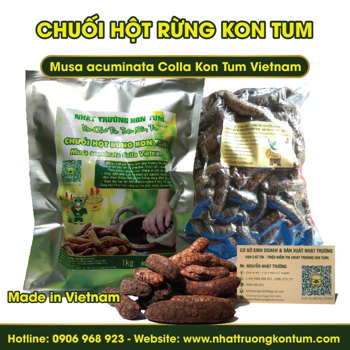 Chuối Hột Rừng Kon Tum - Musa acuminata Colla Kon Tum Vietnam - Túi 1kg