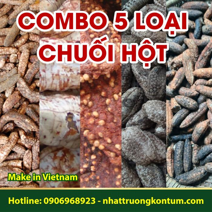 Combo 5 Loại Chuối Hột - Chuối Hột Rừng 1kg - QuảChuối Cô Đơn 200g - Chuối Hột Trồng Ép Miếng 100g (2 Lát) - 500g Chuối Hột Đỏ - 100g Chuối Đá