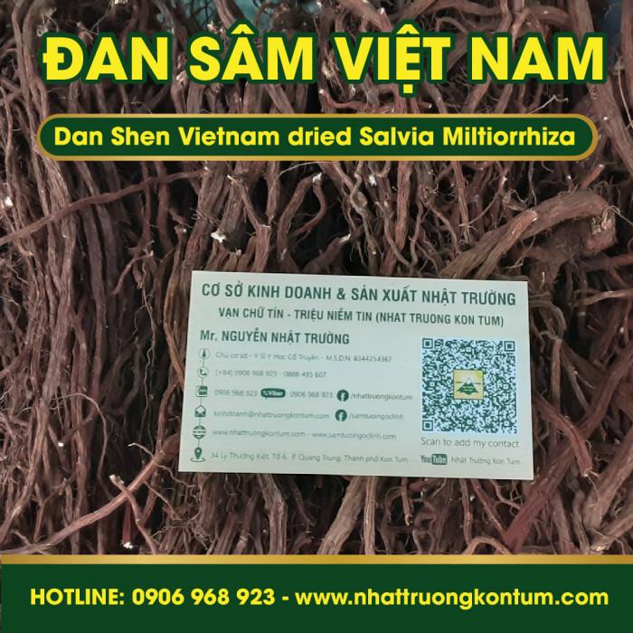Đan Sâm Tây Nguyên Việt Nam Nhật Trường - Dan Shen Vietnam dried Salvia Miltiorrhiza - Túi 0.5kg