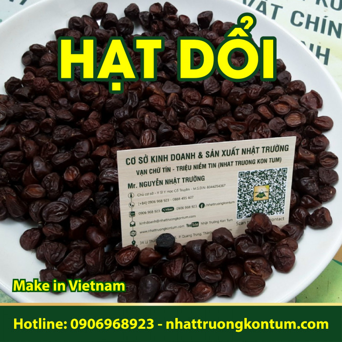 Hạt Dổi Hạt Giổi - Michelia tonkinensis Kon Tum Vietnam- Hũ 100g