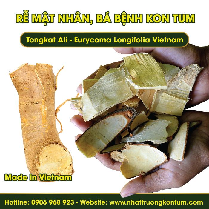 Mật nhân, Bá bệnh Kon Tum - Tongkat Ali - Eurycoma Longifolia Vietnam - Túi 1kg