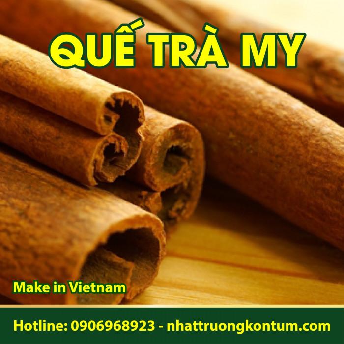 Quế Chi Trà My Nhật Trường Kon Tum - Cinnamomum cassia Presl Vietnam - Túi 1kg