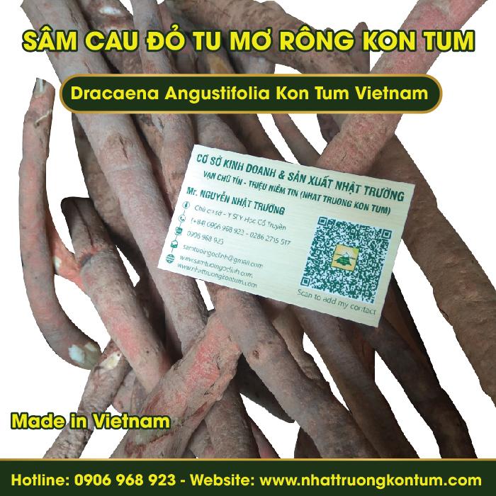 Sâm Cau Đỏ Tươi Tu Mơ Rông Ngọc Linh Kon Tum - Fresh Dracaena Angustifolia - 1kg