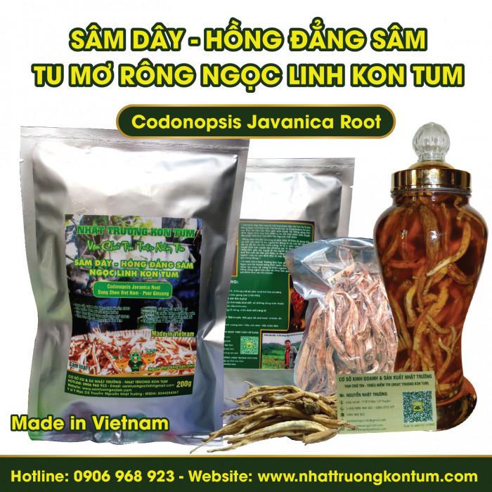 Sâm Dây (Hồng Đẳng Sâm) Tu Mơ Rông Ngọc Linh Kon Tum - Codonopsis Javanica - Loại 2 (Cỡ Trung) - Túi 1kg